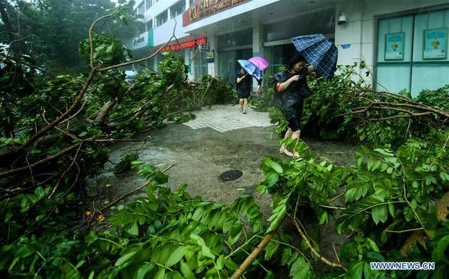 Ít nhất 2 người đã thiệt mạng tại tỉnh Quảng Đông sau khi siêu bão Mangkhut đổ bộ vào đất liền Trung Quốc hôm nay 17/9. Trước đó bão Mangkhut đã càn quét Hong Kong, Macau và Philippines trong những ngày cuối tuần khiến ít nhất 64 người thiệt mạng và hàng chục người mất tích. (Ảnh: Xinhua)
