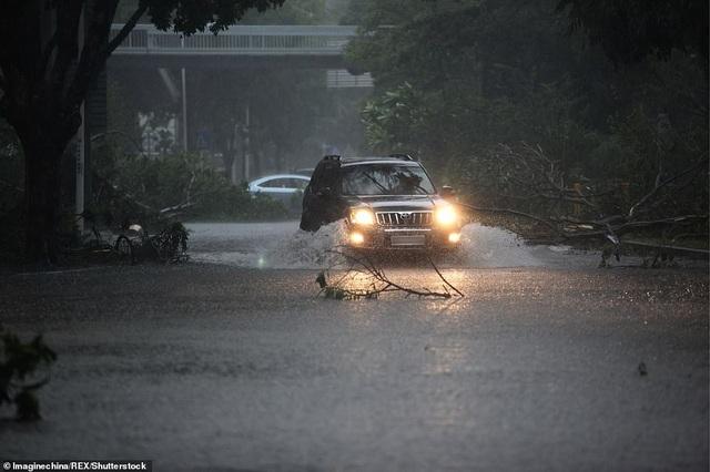 Cơ quan khí tượng Trung Quốc cho biết Mangkhut là một trong 10 cơn bão mạnh nhất đổ bộ vào vùng đông nam Trung Quốc kể từ năm 1949. (Ảnh: REX)