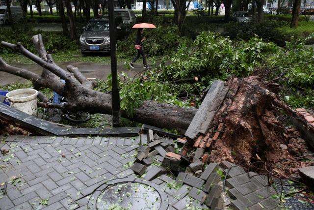 Cơ quan cứu trợ khẩn cấp Trung Quốc cho biết đã cử 24.000 nhân viên tới các khu vực bị ảnh hưởng do bão tại các tỉnh Quảng Đông, Hải Nam, Quảng Tây, Quý Châu, Vân Nam để hỗ trợ người dân. (Ảnh: Reuters)