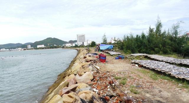 Xung quanh khu vực lấn biển được rào chắn nhưng bên trong để cỏ cây mọc và một số hộ làm sân phơi thủy hải sản.