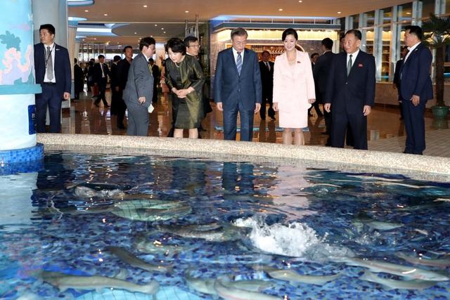 Tổng thống Moon Jae-in và phu nhân thích thú khi quan sát bể cá tại nhà hàng hải sản sông Taedong.