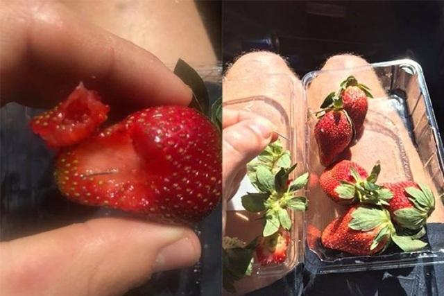 Hiện tượng kim nhọn găm trong dâu tây và các hoa quả tươi khác đang khiến dư luận và người tiêu dùng Australia hoang mang. (Ảnh: ABC News)