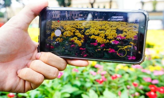 Du khách dùng điện thoại chụp hình vườn hoa.