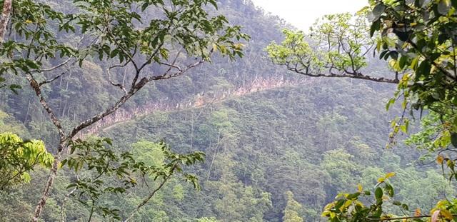 Con đường độc đạo vào điểm trường Xà Phìn, một bên là vách núi, một bên là vực thẳm sâu hun hút.