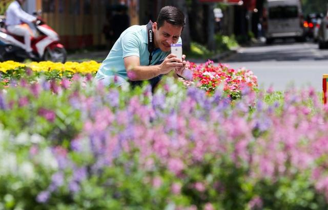 Nhiều du khách nước ngoài thích thú, dùng điện thoại chụp hình vườn hoa.