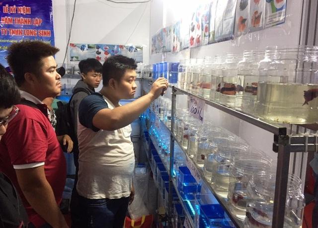 Nhiều vị khách đến tham quan ngày hội cá cảnh. Ảnh: Đại Việt