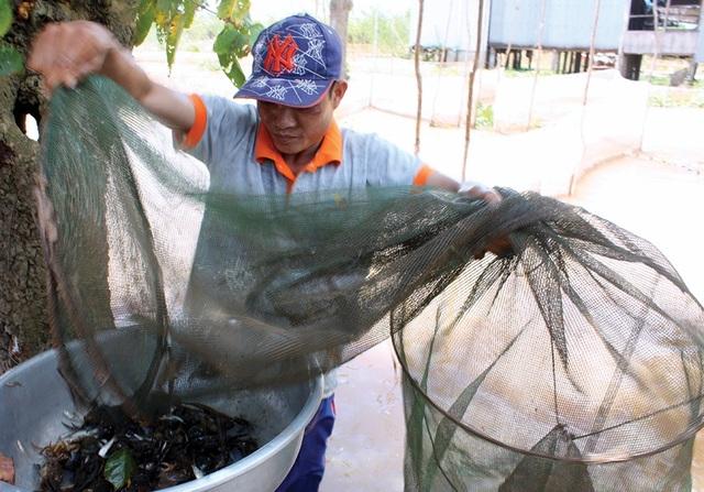 Mùa nước nổi ở An Giang, nước tràn đồng, nghề đánh bắt cá tôm, khai thác cá đồng và các loài thuỷ sản mùa lũ đã mang lại nguồn thu nhập ổn định cho người dân.