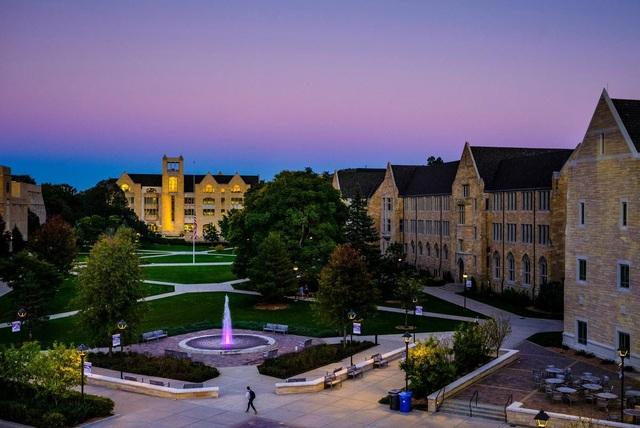 Học tập tại University of St. Thomas với học bổng 70% - 3