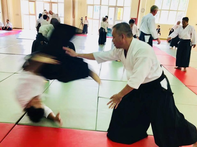 Tập huấn Aikido hữu nghị Châu Á lần thứ 6: Nhiều võ sư Aikido đẳng cấp thế giới tham gia - 5