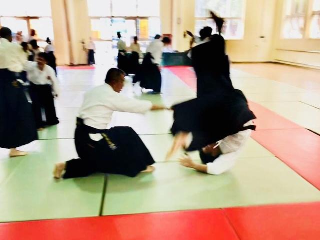Tập huấn Aikido hữu nghị Châu Á lần thứ 6: Nhiều võ sư Aikido đẳng cấp thế giới tham gia - 8