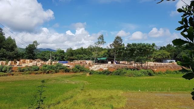 Xưởng gỗ này nằm sát một số thửa ruộng của dân.