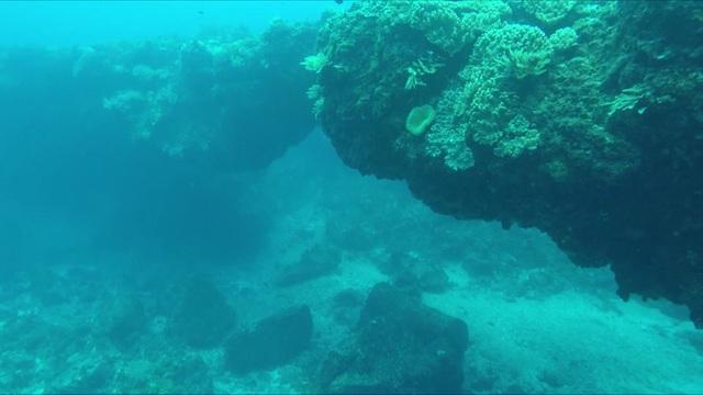 Theo nhận định của các chuyên gia khảo cổ, đây là vòm đá đẹp và kỳ vĩ nhất từng được phát hiện tại Việt Nam. Nhiều khả năng, vòm đá được hình thành từ hoạt động phun trào của núi lửa hàng triệu năm trước. Trong quá trình núi lửa phun trào, nham thạch gặp nước biển đã đông cứng lại tạo nên vòm đá tương tự như cổng Tò Vò trên cạn.