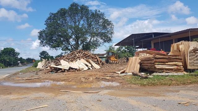 """Xưởng sản xuất gỗ """"3 không"""" mọc lên như nấm, chính quyền có làm ngơ? - 6"""