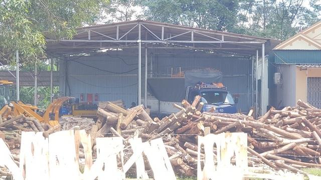 """Xưởng sản xuất gỗ """"3 không"""" mọc lên như nấm, chính quyền có làm ngơ? - 11"""