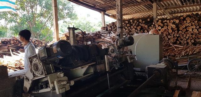 """Xưởng sản xuất gỗ """"3 không"""" mọc lên như nấm, chính quyền có làm ngơ? - 14"""