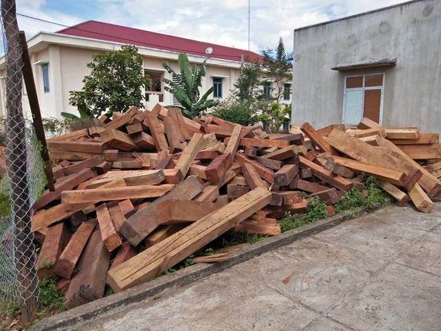 Hàng trăm khối gỗ lớn được tập kết trong làng