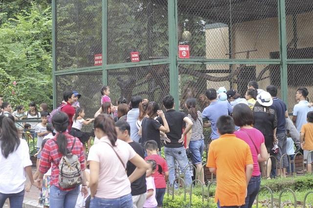 Hà Nội: Hơn 7 vạn du khách đổ về vườn thú, 21 trẻ em lạc mẹ được giao cho gia đình! - Ảnh 2.