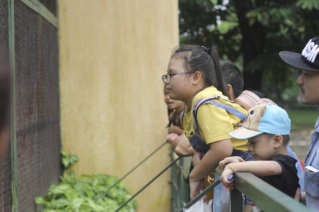 Hà Nội: Hơn 7 vạn du khách đổ về vườn thú, 21 trẻ em lạc mẹ được giao cho gia đình! - Ảnh 1.
