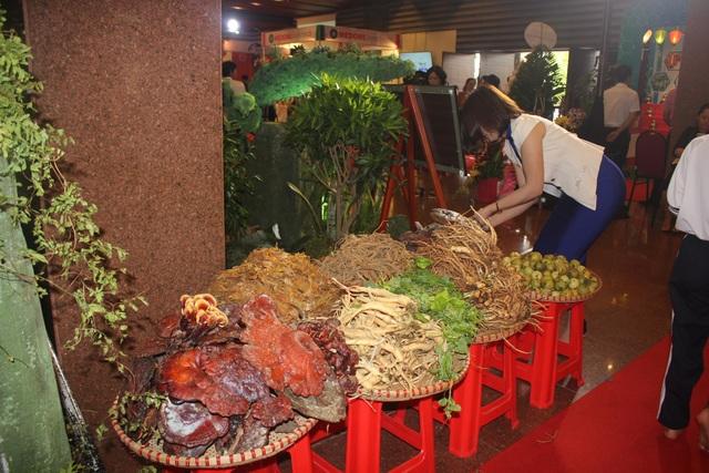 Nhiều cây dược liệu quý khách cũng được mang đến triển lãm
