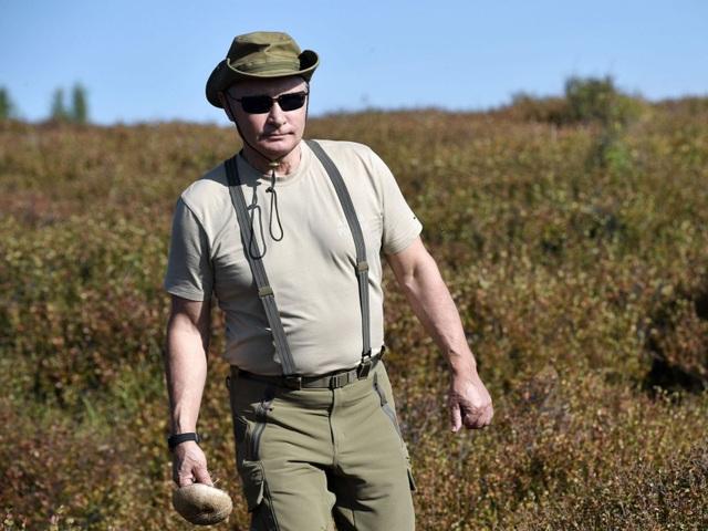 Ông Putin đi hái nấm ở Siberia (Ảnh: Sky)