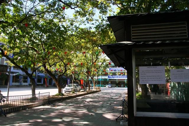 Thông báo nghỉ học chiều 5/9 ở trường tiểu học Quang Trung, TP Huế