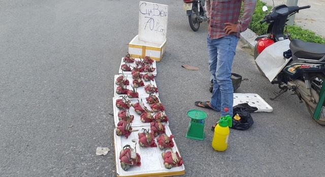 sạp cua biển giá bán siêu rẻ đang được khá nhiều người bán tại đường ở Hà Nội. Nhiều người dân rất lo lắng khi cua không rõ nguồn gốc được tuồn vào chợ.