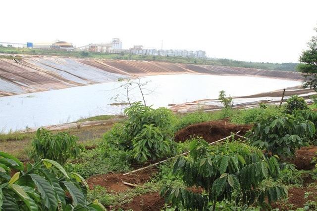 Khu vực sụt lún gần ngay hồ bùn đỏ của nhà máy Alumin Nhân Cơ