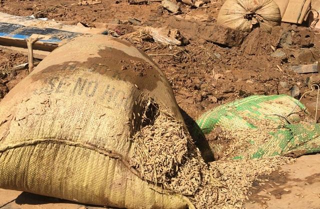 Những bì lúa đầy đất và nước của người dân còn sót lại