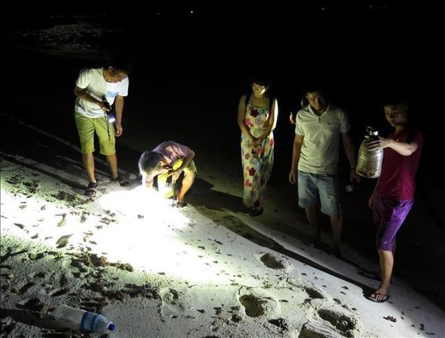 Tới đảo Bé, Lý Sơn trải nghiệm săn cua, còng đêm - 1