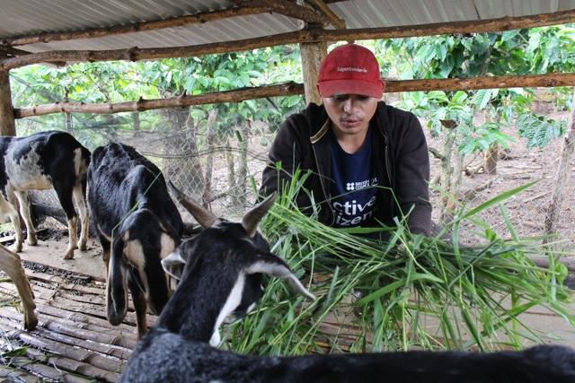 Khi còn là sinh viên, Brooke đã tìm hiểu những cách làm nông nghiệp phù hợp với hoàn cảnh và thực tế của địa phương để tăng năng suất và hiệu quả kinh tế
