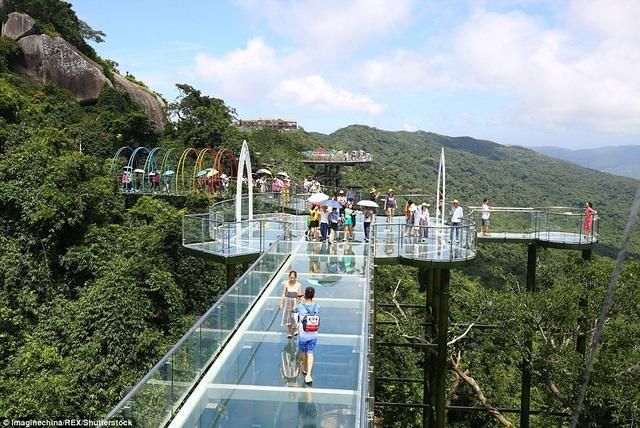 Trung Quốc mở cửa cầu đáy kính đi xuyên rừng ở độ cao 450m - 6