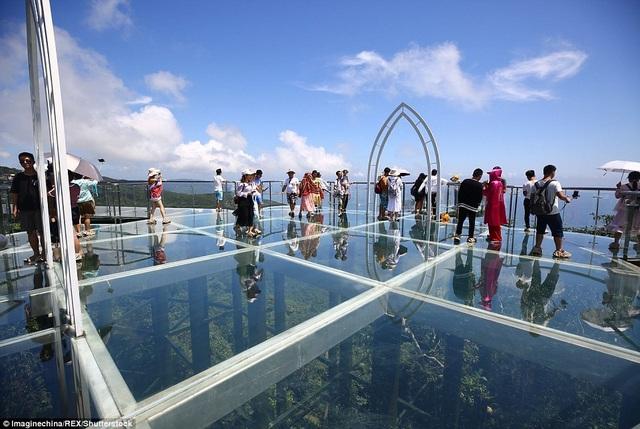 Đứng trên cầu kính có thể phóng tầm mắt nhìn toàn cảnh biển và rừng phía dưới