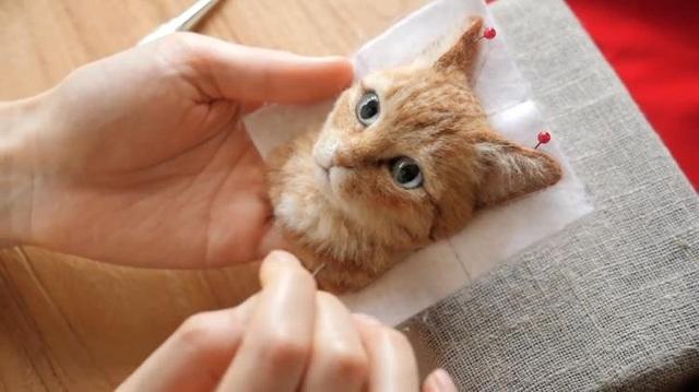 Nhiều người sẽ nhầm tưởng đây là mèo thật