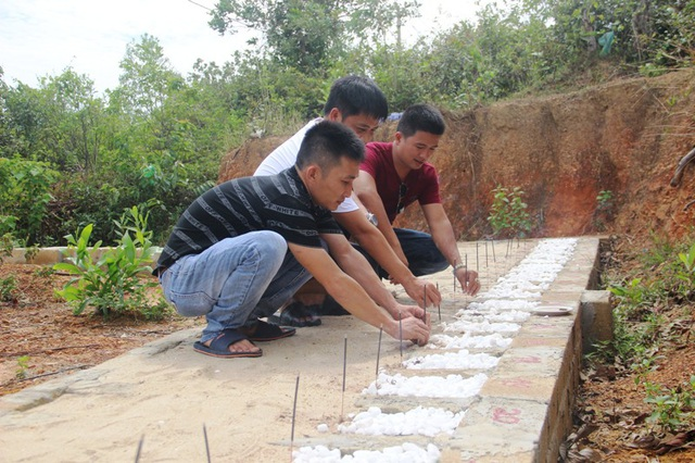 Ba chàng trai trẻ chung tâm ý làm thiện nguyện