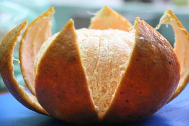 Cứ đến mùa các thương lái từ nhiều nơi lại tìm đến tận vườn để thu mua. Mỗi quả trung bình nặng khoảng 0,3kg, có những quả nặng hơn 0,7kg. Giá cam bù Hương Sơn thu mua tại vườn có giá từ 40 nghìn đến 50 nghìn đồng/kg.
