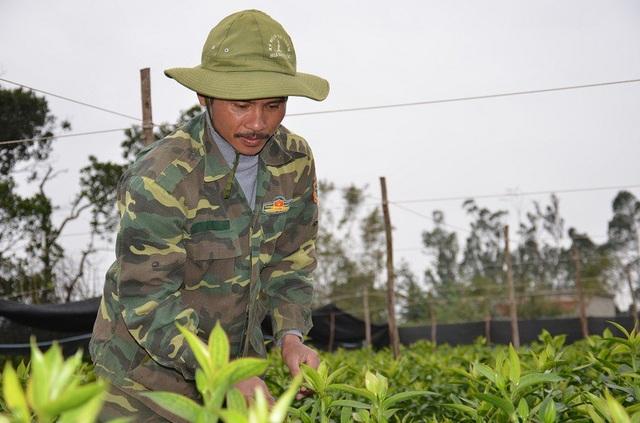 Anh Nguyễn Hữu Khiều đang rất lo lắng vì thời tiết rét sẽ khiến vườn hoa ly của anh chậm nở