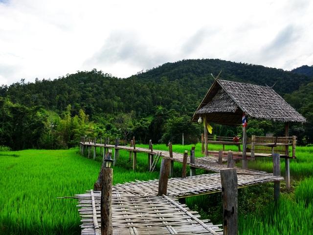 Bamboo Brigde ở Pai
