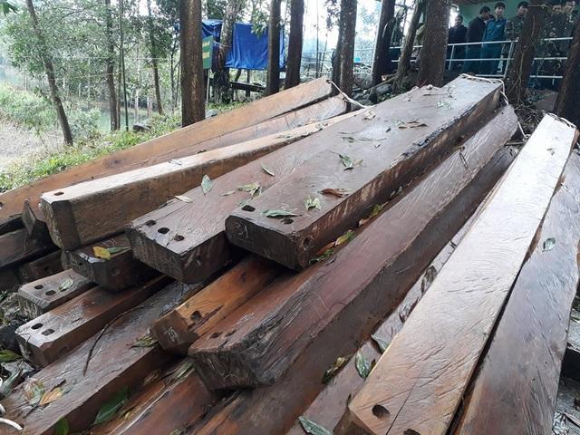 Số lượng lớn gỗ Kiền bị Hạt Kiểm lâm A Lưới bắt giữ
