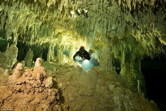 Các thợ lặn chuyên nghiệp thuộc dự án GAM vừa khám phá ra hệ thống hang động ngầm lớn nhất thế giới ở Mexico