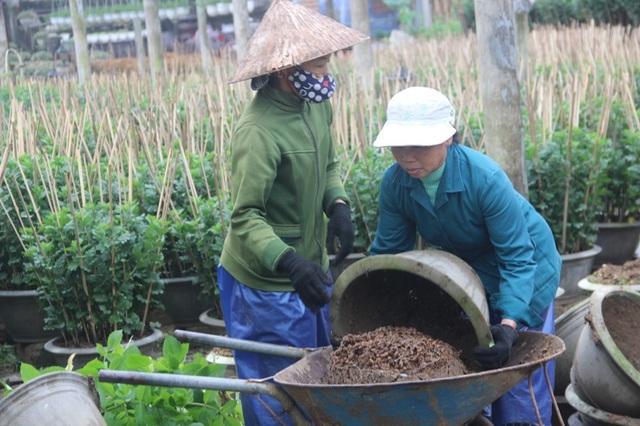 Người dân tất bật chuẩn bị đất trồng hoa