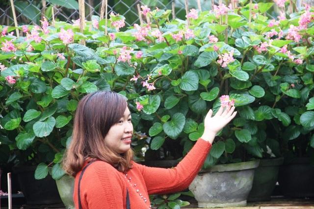 Một phụ nữ bên những chậu hoa khoe sắc