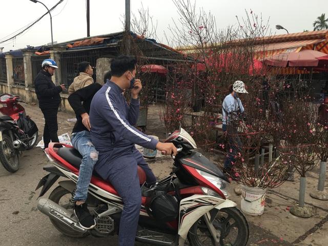 """Không đợi đến Tết, người Hà Nội """"đua nhau"""" chơi đào sớm - 5"""