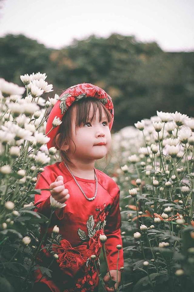 """Bộ ảnh """"không thể không yêu"""" của bé gái 3 tuổi Nghệ An - 9"""
