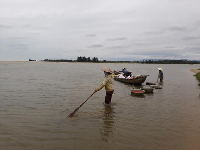 Hàng trăm người dân Quảng Ngãi phải ngâm mình trong nước lạnh nhủi hến mưu sinh
