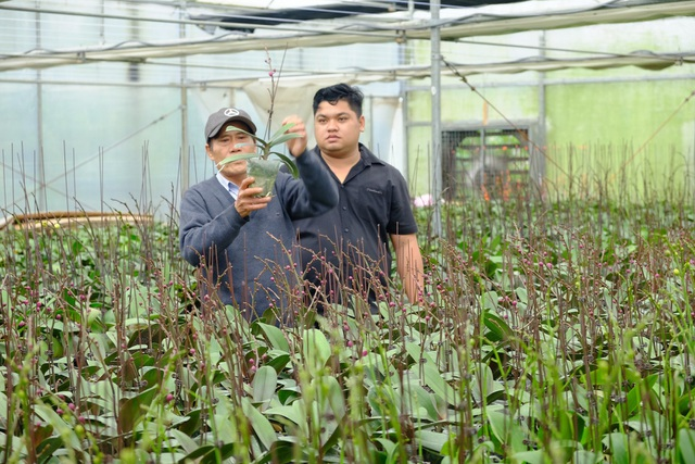 Ngoài chuyển giao công nghệ cho bà con nông dân, Trung tâm Công nghệ sinh học TP Đà Nẵng đã nghiên cứu và cho ra đời nhiều giống hoa phù hợp với khí hậu của địa phương