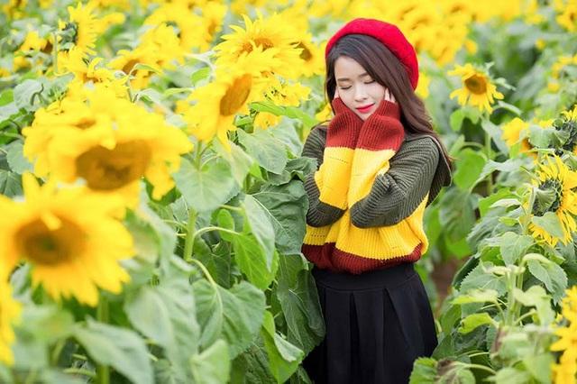 """Nữ sinh xứ Nghệ """"gây thương nhớ"""" với bộ ảnh ở cánh đồng hoa hướng dương - 12"""