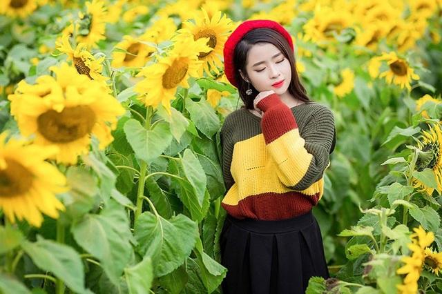 Ngoài thời gian dành cho việc học ở trường, Nguyệt Hằng không ngần ngại tham gia những chuyến đi cùng bạn bè, cánh đồng hoa hướng dương là một trong những điểm dừng chân của Hằng trong hành trình khám phá cuộc sống.