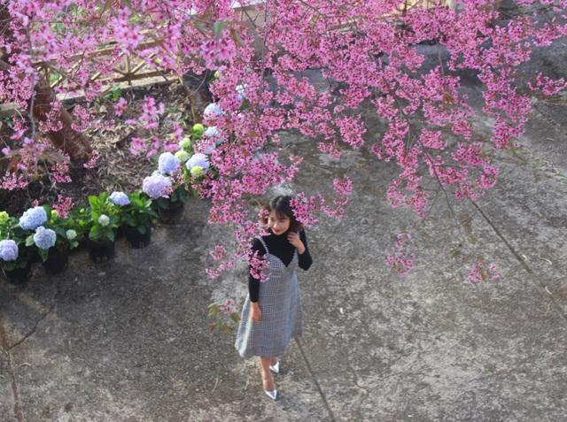 Thiếu nữ e ấp bên hoa