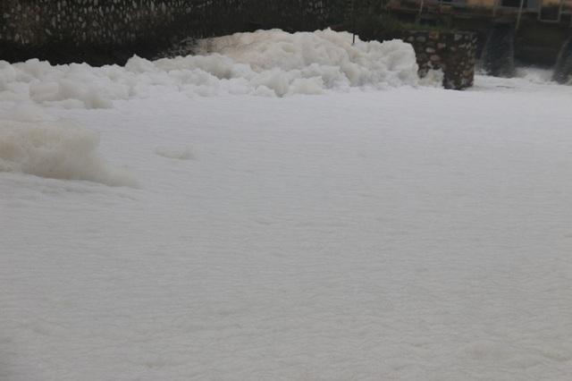 Cả vùng trạm bơm như đang đóng băng tuyết
