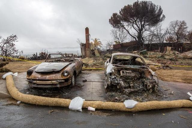 Theo nhận định ban đầu của các nhà chức trách, nguyên nhân dẫn tới trận lũ bùn kinh hoàng này là do vụ cháy rừng lịch sử tại California hồi tháng trước khiến cây cối bị thiêu rụi và nền đất bị yếu đi, từ đó đất đá dễ bị cuốn trôi khi xảy ra mưa lớn.
